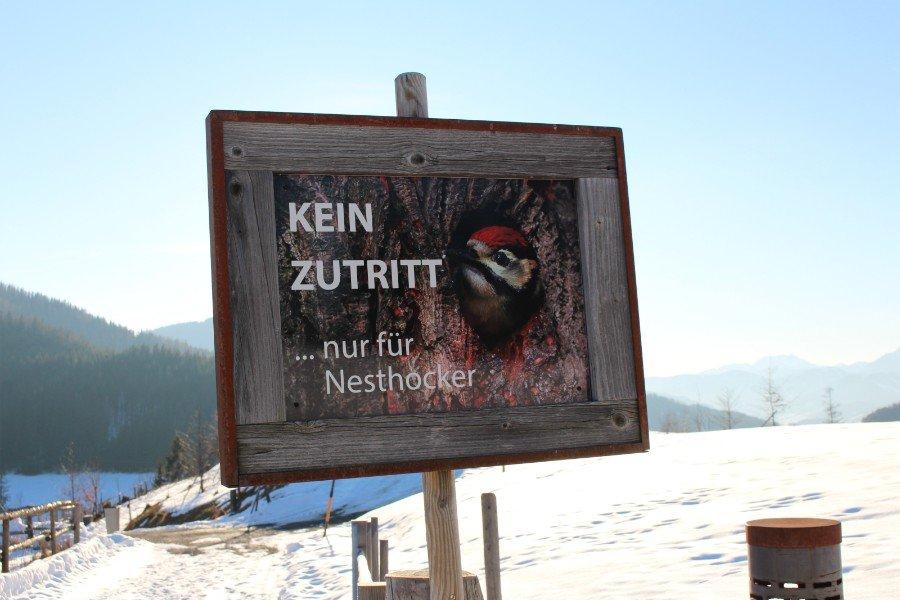 4 Genusstipps für Österreich