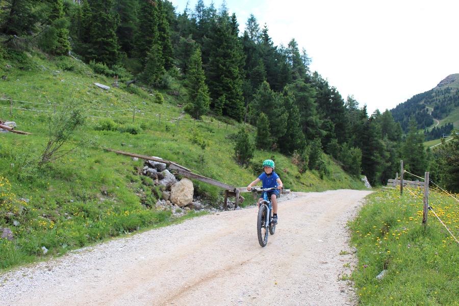 Unsere Sommererlebnisse mit woom Bike + Herbsttipp