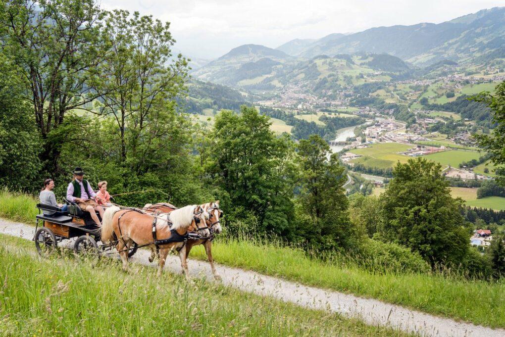 2 Geheimtipps mit Bauernhof-Feeling für Familien im Salzburgerland